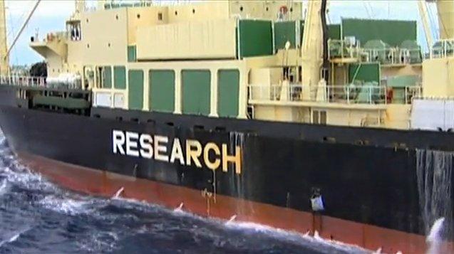 Japanese whaler mothership